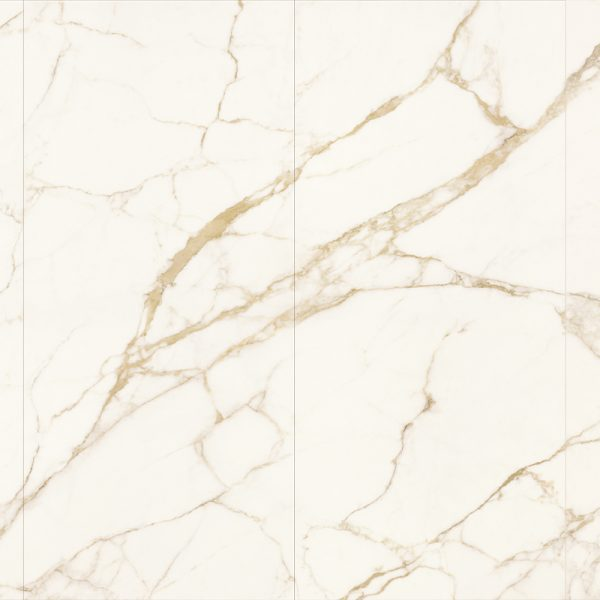 521 Marble Look Porcelain