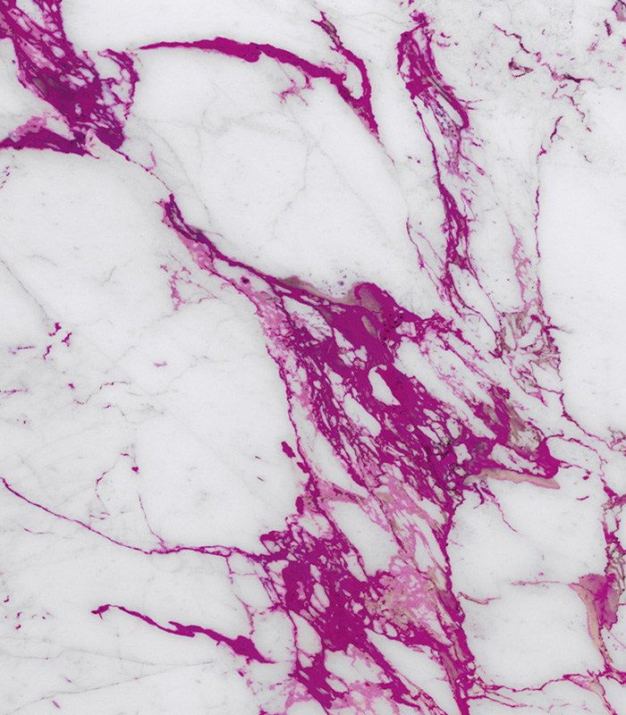 Electric Marble Calacatta Fuxia from Sicis Electric Marble Collection available at Ruben Sorhegui Tile Distributors Southwest Florida's largest tile, stone and mosaics distributor