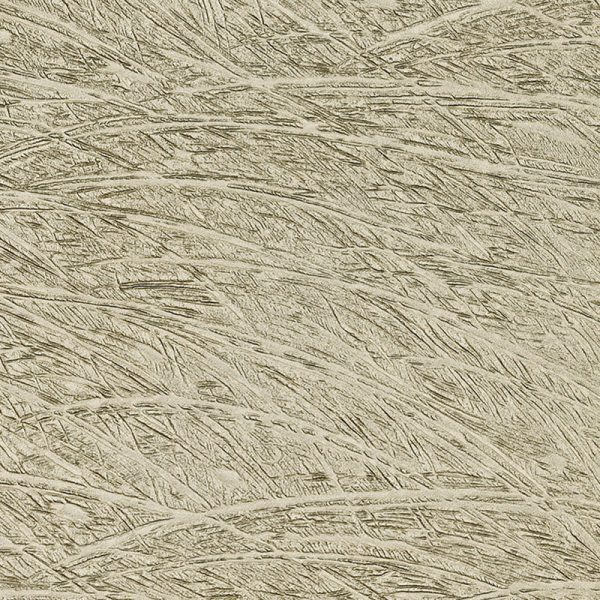 Feather Champagne Glass Slab available at Ruben Sorhegui Tile